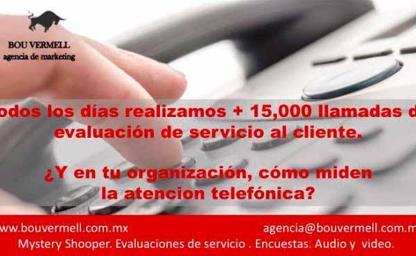 Bou Vermell Auditoria Telefónica